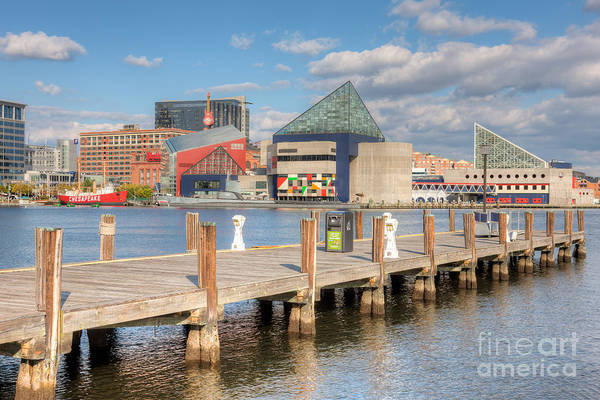 Photograph - Baltimore Inner Harbor Skyline IIi by Clarence Holmes