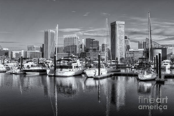 Photograph - Baltimore Inner Harbor Skyline Iv by Clarence Holmes