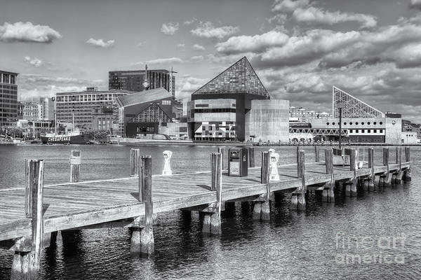 Photograph - Baltimore Inner Harbor Skyline Vi by Clarence Holmes