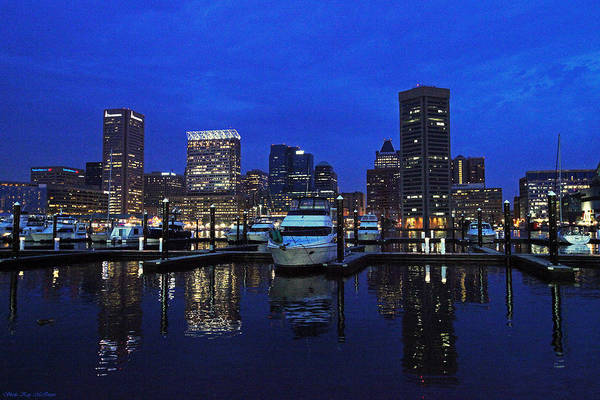 Photograph - Baltimore Md Skyline At Night by Sheila Kay McIntyre