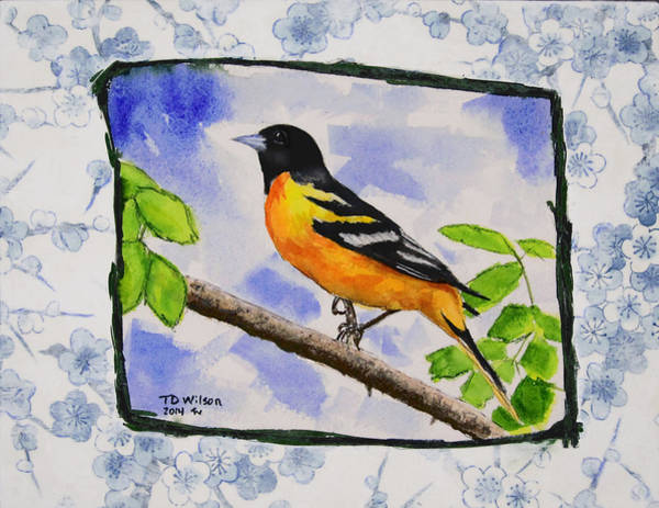 Painting - Baltimore Oriole - Jaggy Border by TD Wilson