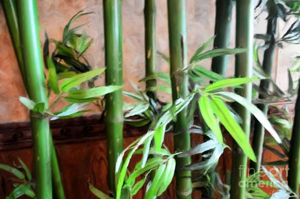 Bamboo Shoots Photograph - Plant -  Bamboo  -  Luther Fine Art by Luther Fine Art