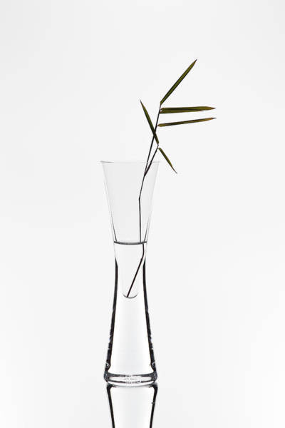 Vases Photograph - Bamboo by Christian Pabst