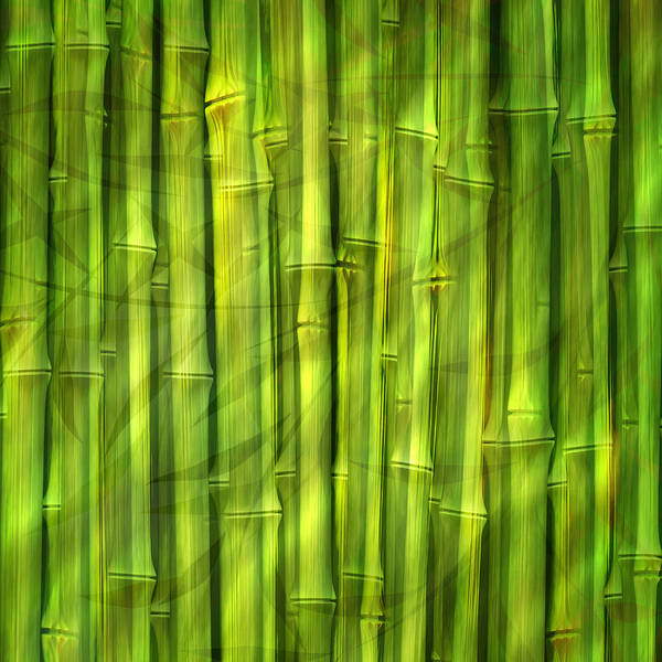 Digital Art - Bamboo Dream by Lutz Baar