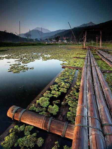 Raft Photograph - Bamboo Raft by Franciscus Nanang Triana