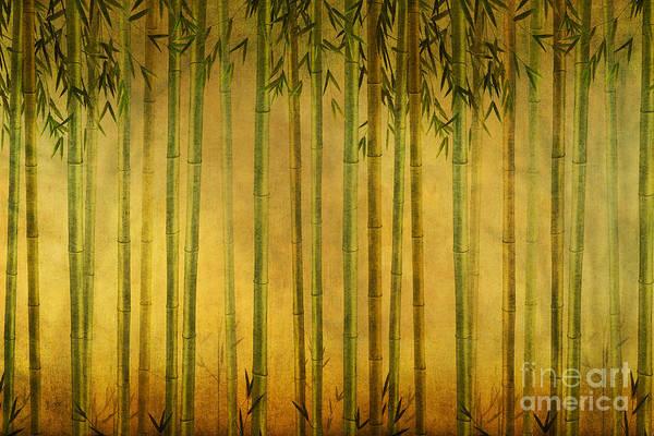 Bamboo Digital Art - Bamboo Rising by Peter Awax