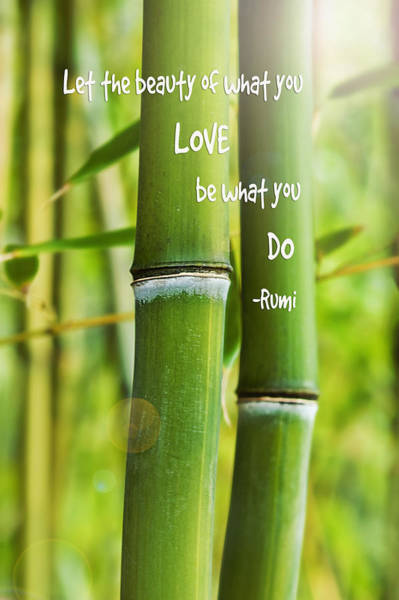 Bamboo Shoots Photograph - Rumi Quote Bamboo I by Marianne Campolongo
