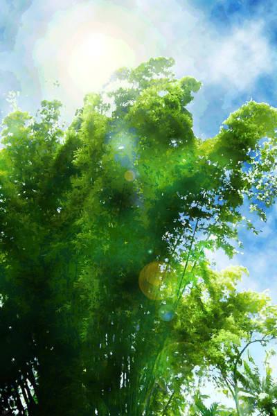 Digital Art - Bamboo Trees Jamaica by Matt Lindley
