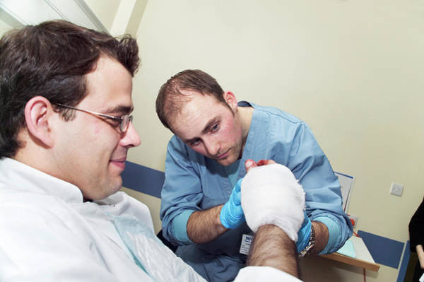 Bandage Photograph - Bandaged Hand by Gustoimages/science Photo Library