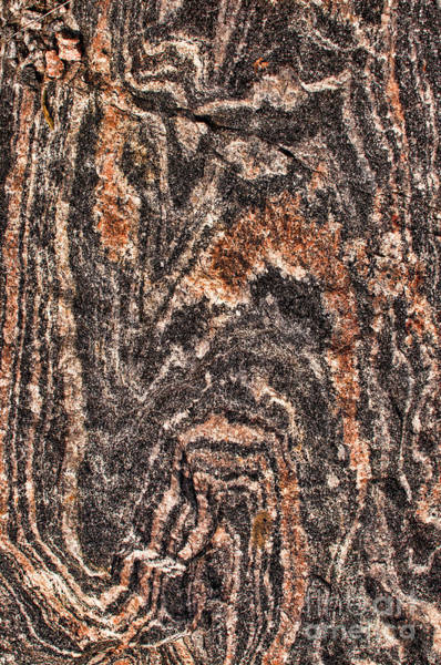 Photograph - Banded Gneiss Rock - Pattern by Les Palenik
