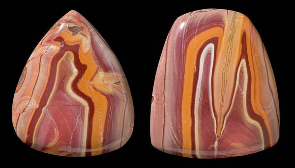 Silicon Dioxide Photograph - Banded Rhyolite Specimens by Natural History Museum, London/science Photo Library