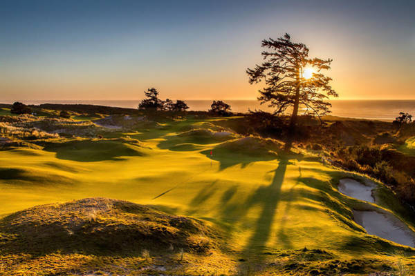Linked Photograph - Bandon Preserve Sunset by Mike Centioli