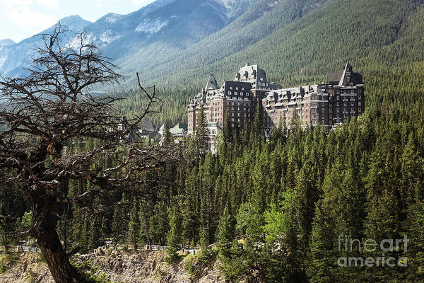 Photograph - Banff Springs Hotel  by Sandra Cunningham
