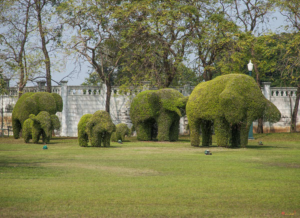 Photograph - Bang Pa-in Royal Palace Elephant Topiary Dtha0118 by Gerry Gantt