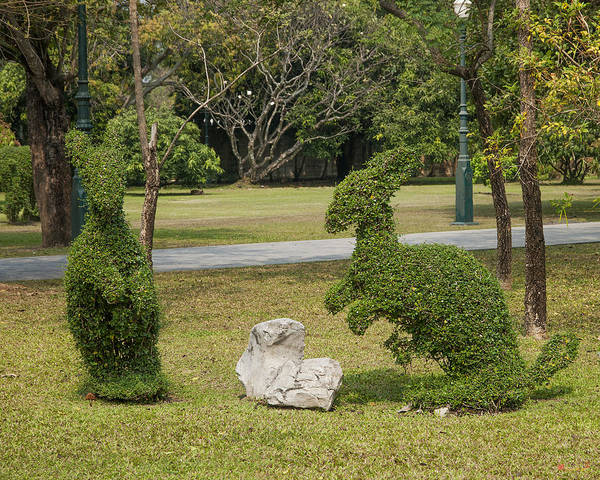 Photograph - Bang Pa-in Royal Palace Kangaroo Topiary Dtha0114 by Gerry Gantt