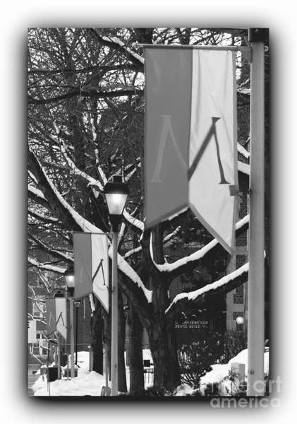 Muhlenberg Photograph - Banners With Border Bw by Jacqueline M Lewis