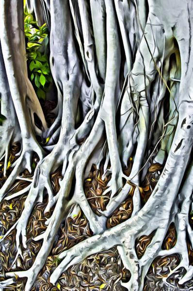 Digital Art - Banyan Tree  by Patrick M Lynch