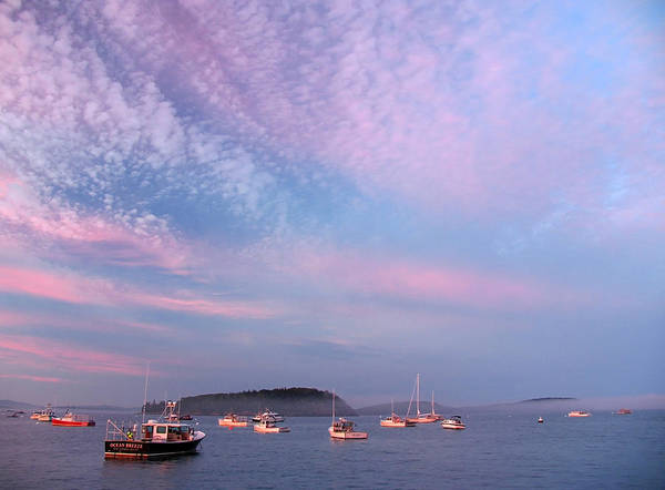 Photograph - Bar Harbor Sunset by Juergen Roth