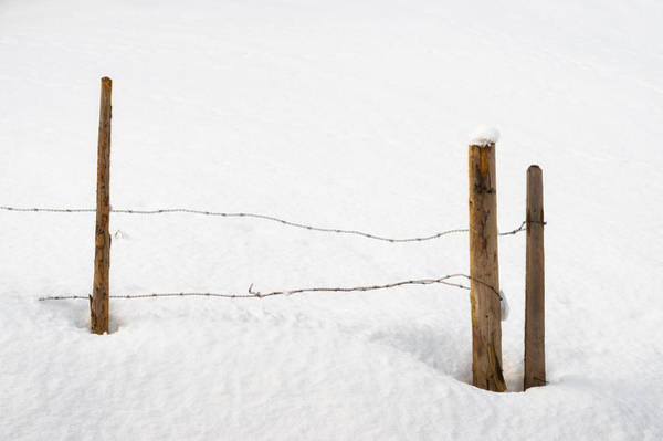 Photograph - Barb Wire Fence In Winter Minimalist Image by Matthias Hauser