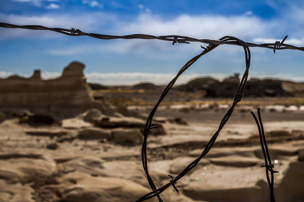 Photograph - Barb Wire by Ron Pate