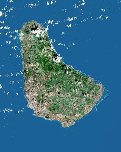 Landsat 7 Wall Art - Photograph - Barbados by Mda Information Systems/science Photo Library