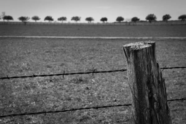 Photograph - Barbed Horizon by Dwight Theall
