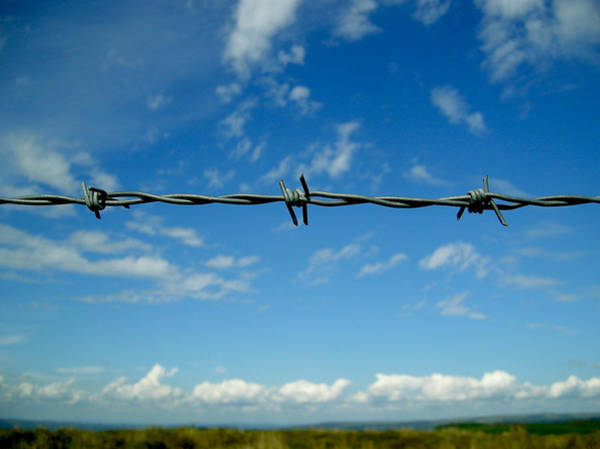 Boundary County Photograph - Barbed Sky by Nina Ficur Feenan