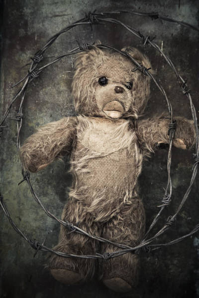 Photograph - Barbed Wire And Teddy by Maria Heyens