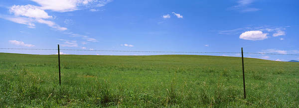 Wall Art - Photograph - Barbed Wire Fence In A Field, San by Panoramic Images
