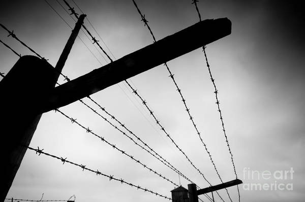 Concentration Camp Photograph - Barbed Wire Fence by Michal Bednarek