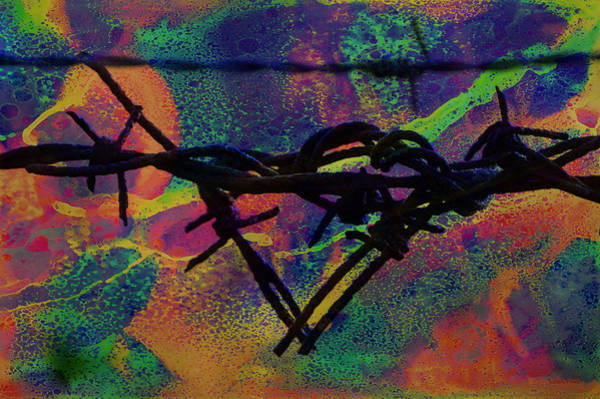 Mixed Media - Barbed Wire Love-punch Drunk by Lesa Fine