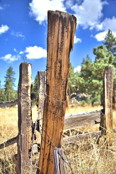 Photograph - Barbed Wire On A Fencepost by Gordon Elwell
