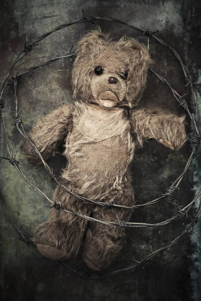 Photograph - Barbed Wire With Teddy Bear by Maria Heyens