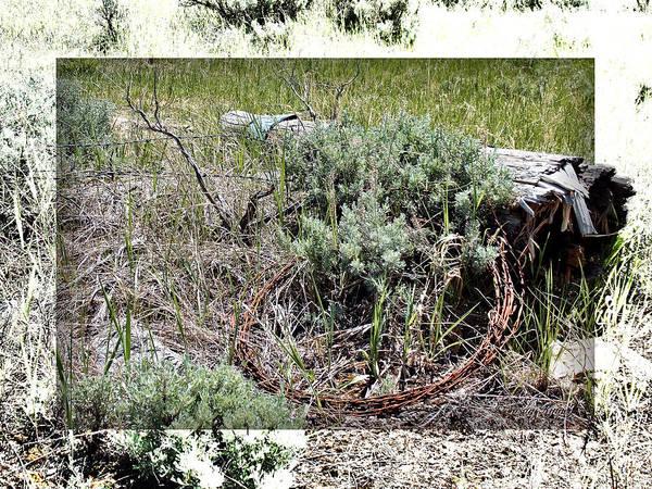 Photograph - Barbwire Wreath 2 by Susan Kinney