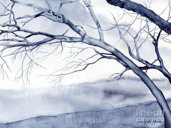Monochrome Painting - Bare Trees by Hailey E Herrera