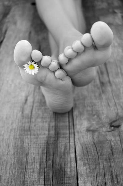 Daisy Flower Photograph - Barefoot by Aged Pixel