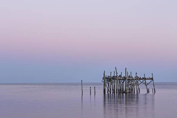 Cedar Key Photograph - Barely Standing by Jon Glaser