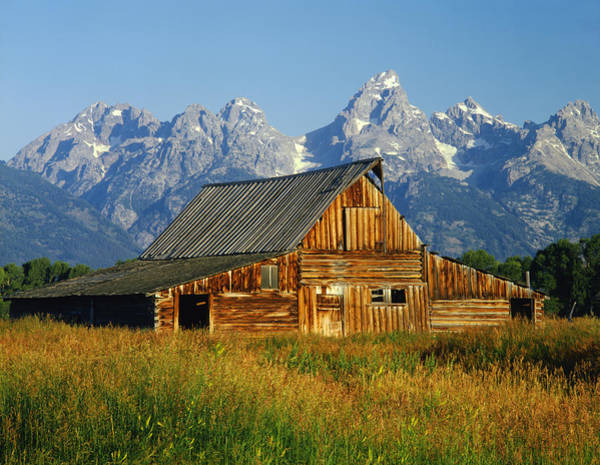 Photograph - 1m9394-barn And The Tetons by Ed  Cooper Photography
