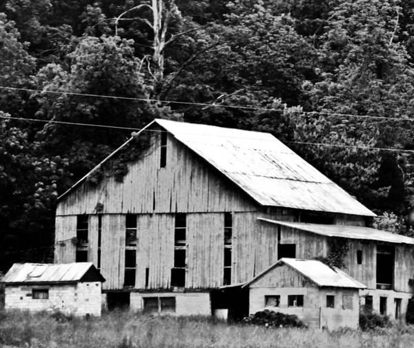 Photograph - Barn Art by Jp Grace
