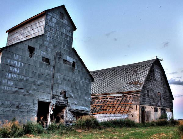 Photograph - Barn Better Days by David Matthews