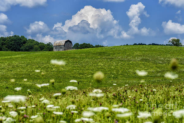 Photograph - Barn Clouds And Pasture by Thomas R Fletcher