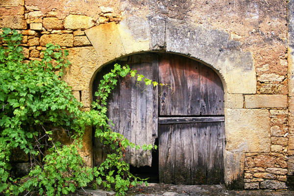 Photograph - Barn Door In France by Georgia Fowler