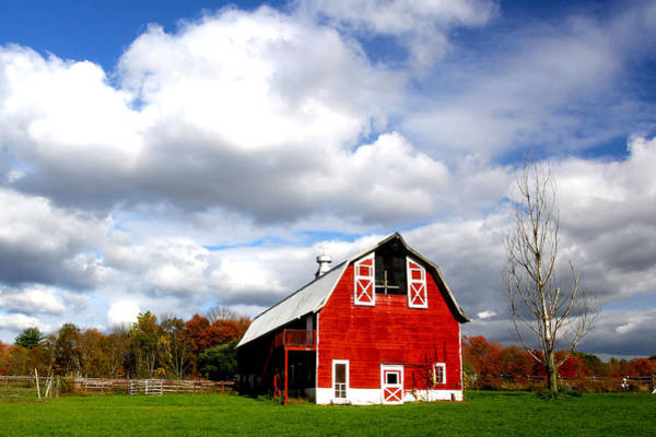 Wall Art - Photograph - Barn by Frank Savarese