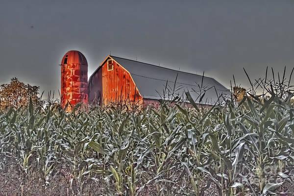 Photograph - Barn In A Corn Field by Jim Lepard