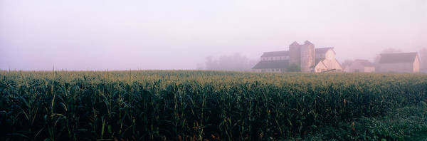 Peacefulness Photograph - Barn In A Field, Illinois, Usa by Panoramic Images