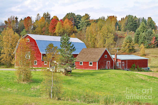 Photograph - Barn In Autumn by Deborah Benoit