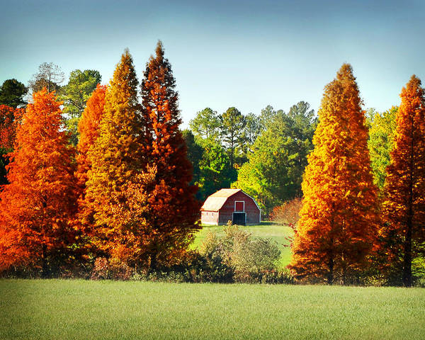 Photograph - Barn In Fall by Val Stone Creager