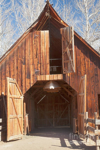 Photograph - Barn In Littleton Historic Museum by Fred Stearns