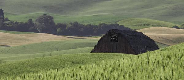 Wall Art - Photograph - Hidden Barn by Latah Trail Foundation