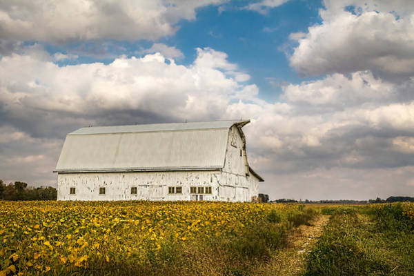 Photograph - Barn In The Middle Of The Field by Ron Pate